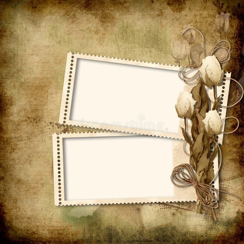 框架照片玫瑰葡萄酒 皇族释放例证