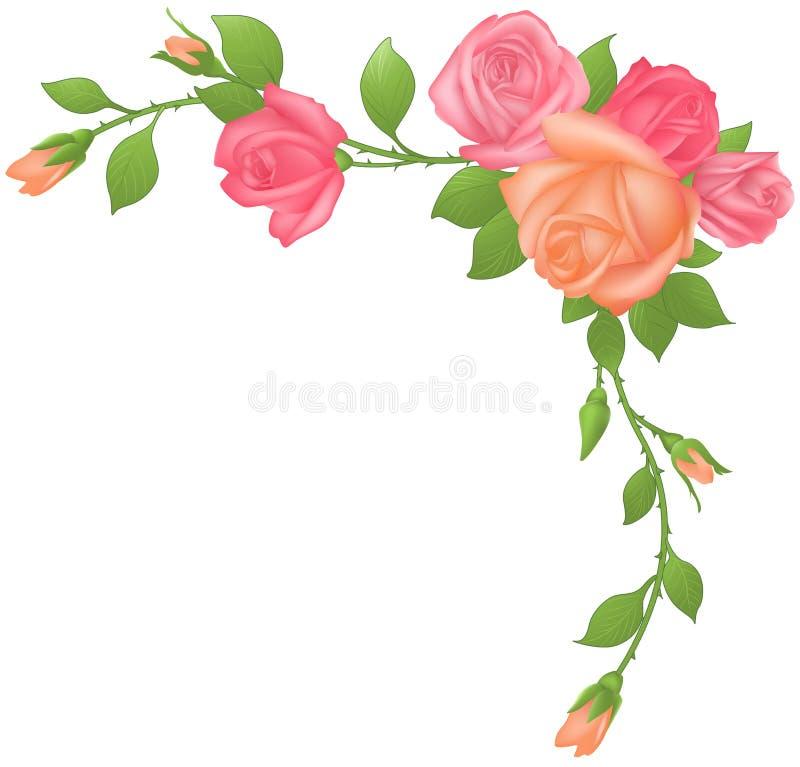 框架玫瑰 向量例证