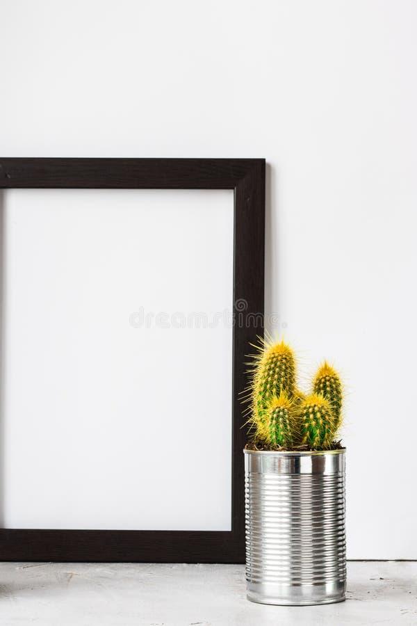框架用在金属罐头的仙人掌在灰色水泥地板上 图库摄影
