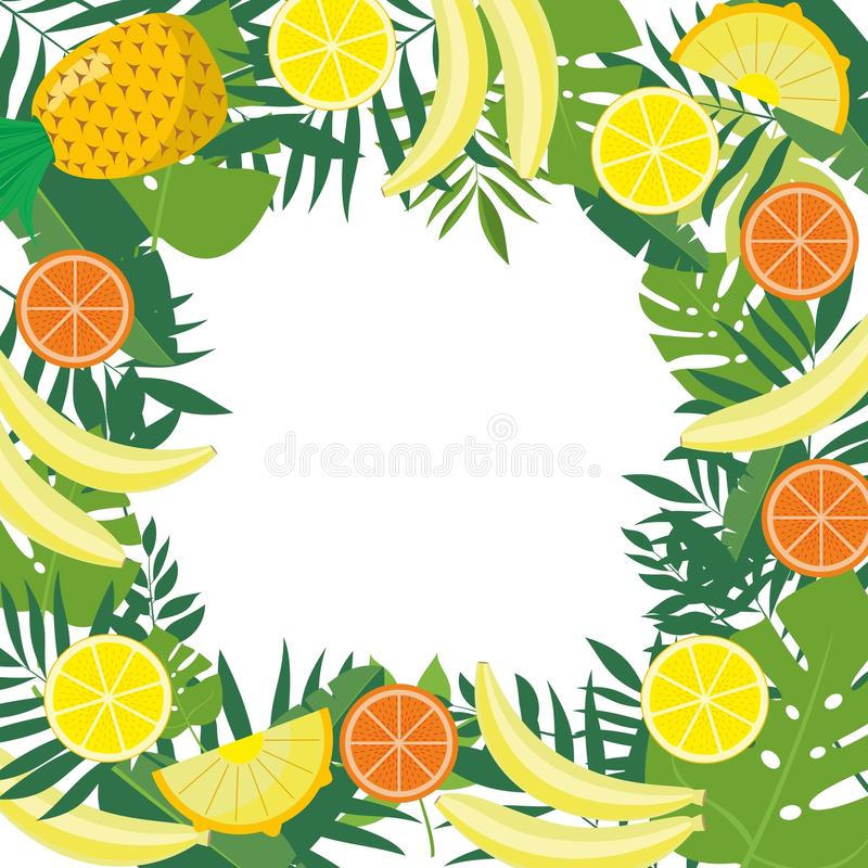 框架用热带水果和叶子 为给小册子设计,标签,包装,菜单做广告 库存例证