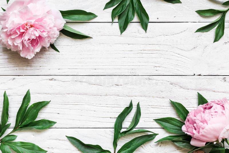 框架由桃红色牡丹制成开花在与拷贝空间的白色木桌 背景高雅重点邀请浪漫符号温暖的婚礼 顶视图 平的位置 库存照片