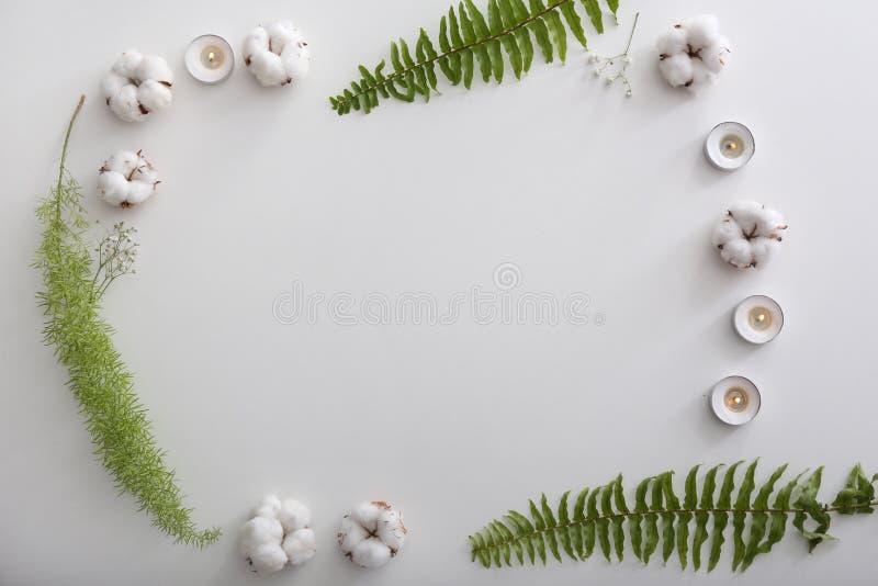 框架由燃烧的蜡烛、棉花花和热带叶子制成在白色背景 图库摄影