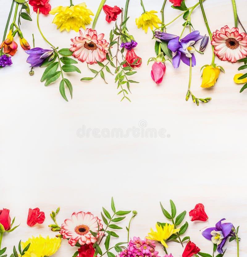 框架从各种各样的春天夏天开花,文本的空间 库存图片