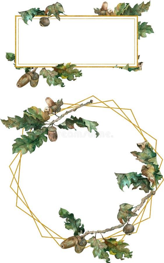 框架 橡木分支和橡子 额嘴装饰飞行例证图象其纸部分燕子水彩 向量例证