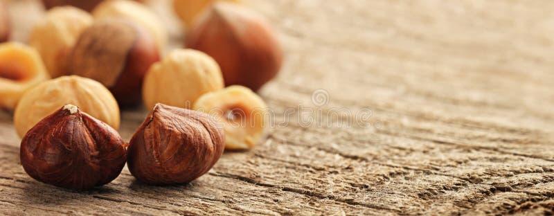 桌上新鲜烤榛子 免版税库存照片