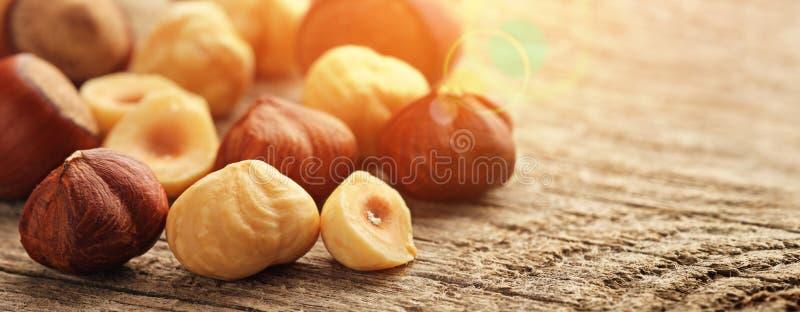 桌上新鲜烤榛子 库存图片