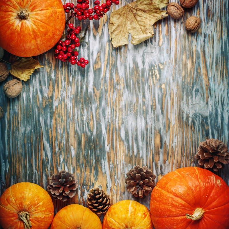 桌装饰用南瓜,收获节日,愉快的感恩 图库摄影