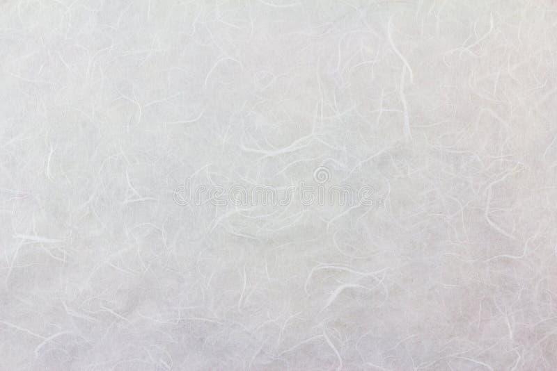 桑树纸纹理背景 库存图片