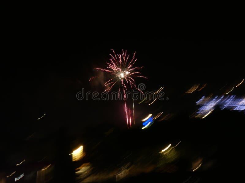 桑特霍安、火箭和爆竹夜的马鞭草属植物  免版税库存照片