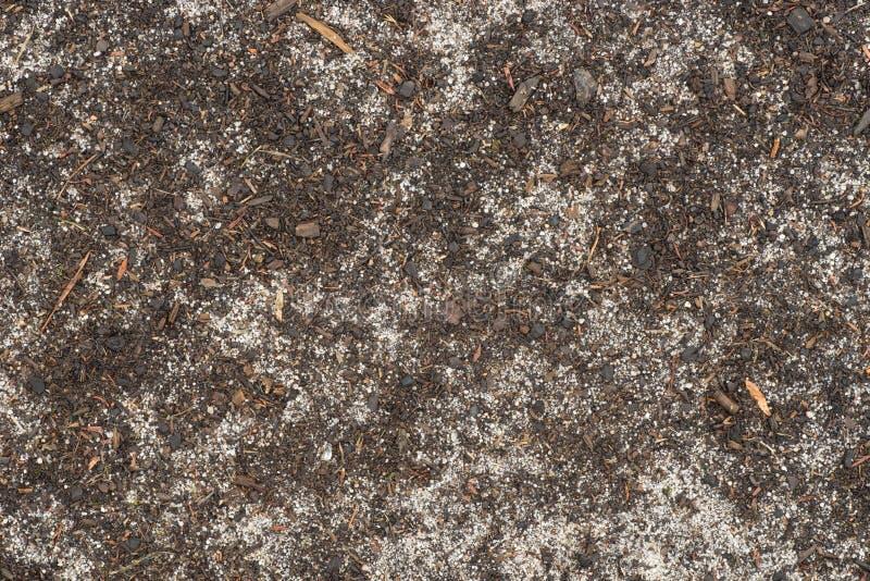 桑迪土壤地面背景纹理 免版税库存图片