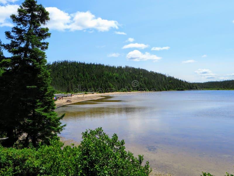 桑迪池塘原始清楚的水在特拉诺华国家公园,纽芬兰与拉布拉多,加拿大 免版税图库摄影
