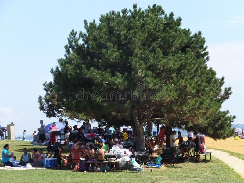 桑迪点国家公园在马里兰 免版税图库摄影