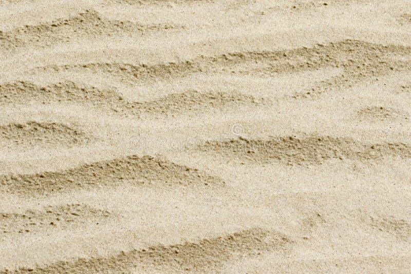 Download 桑迪背景纹理 库存图片. 图片 包括有 背包, 空间, 海岸线, 滚磨的, 谷物, 织地不很细, 靠山, 海洋 - 72368559