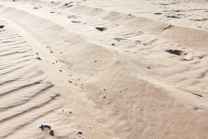 桑迪背景,一片干旱的沙子沙漠的纹理 库存图片