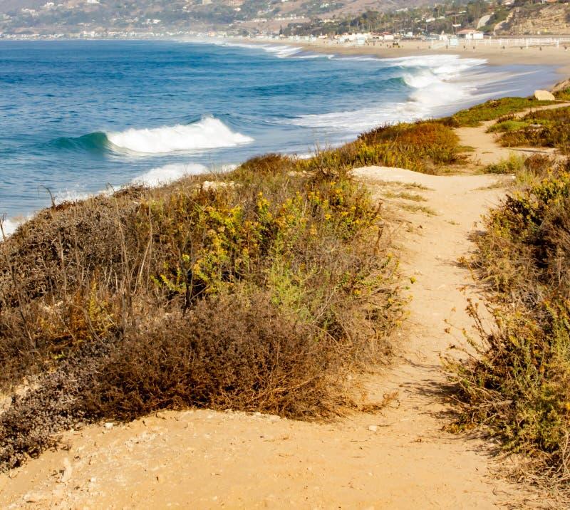 桑迪路标示用杂草和野花有海洋海岸线小山顶视图  免版税图库摄影