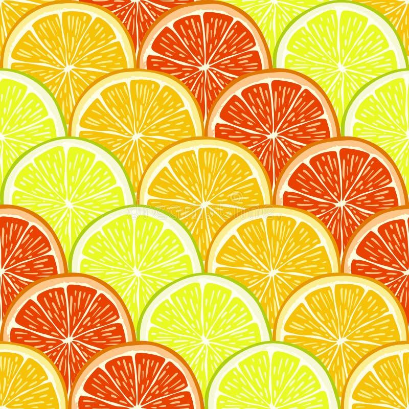桔子、柠檬和葡萄柚切片 皇族释放例证