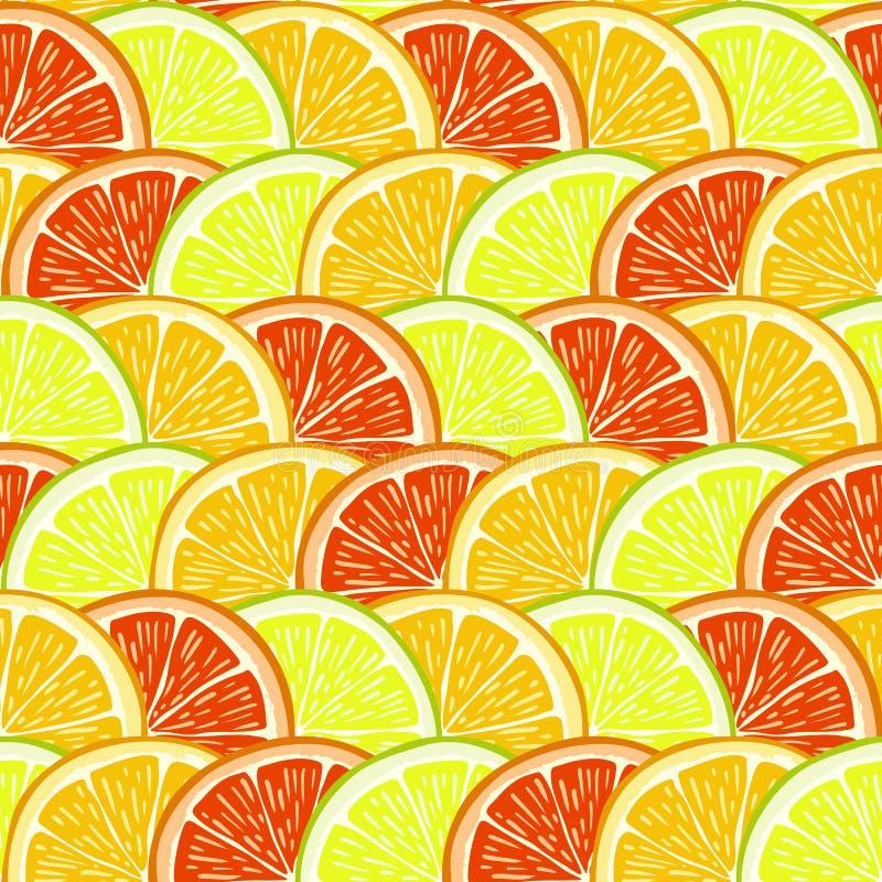 桔子、柠檬和葡萄柚切片 向量例证