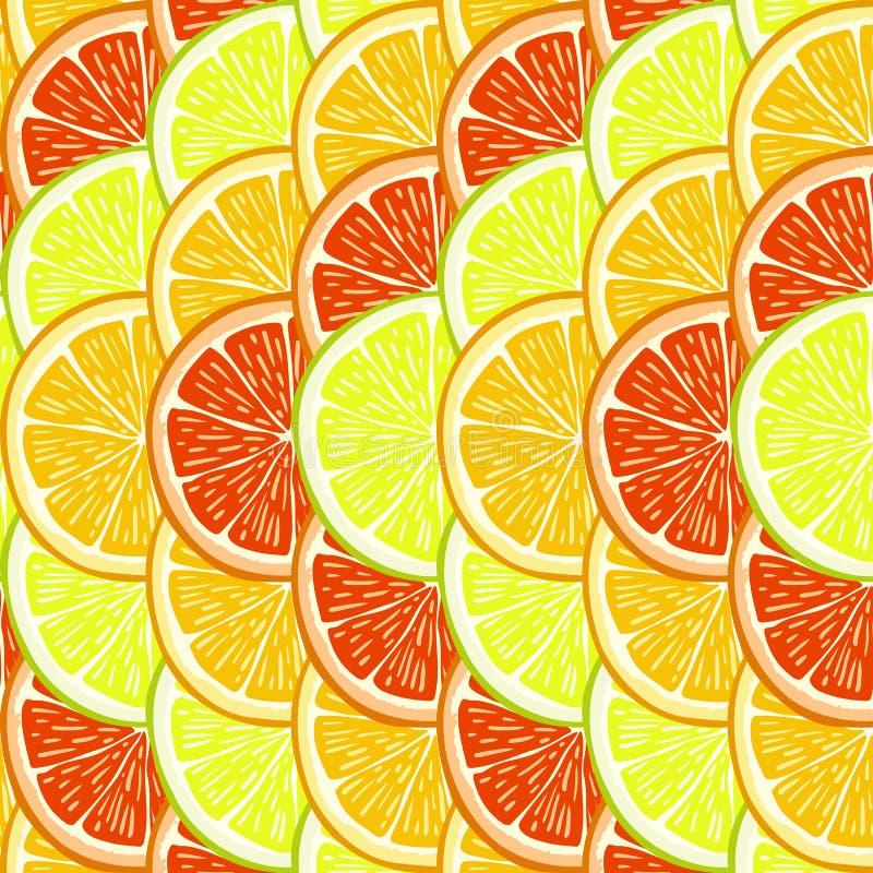 桔子、柠檬和葡萄柚切片 库存例证