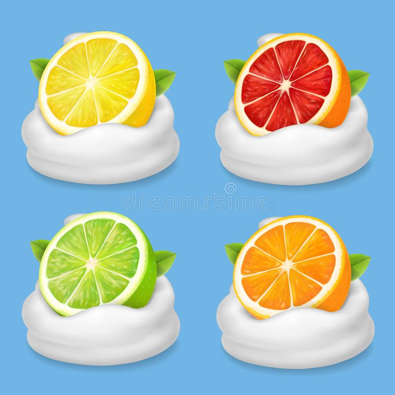 桔子、石灰、葡萄柚和柠檬在酸奶 在被鞭打的奶油色现实例证的柑桔 纸板颜色图标图标设置了标签三向量 皇族释放例证