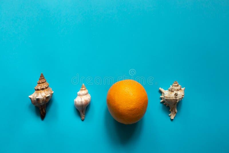 桔子和壳 库存照片
