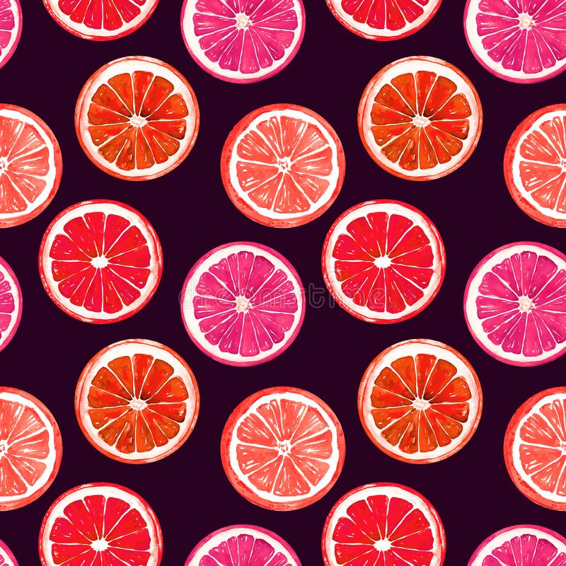 桔子和葡萄柚在黑暗的背景 向量例证