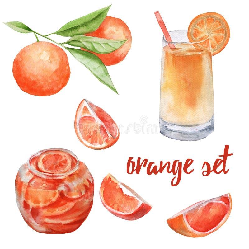 桔子集合 在玻璃、一个瓶子果酱,三个橙色切片和果子的汁液在分支 皇族释放例证