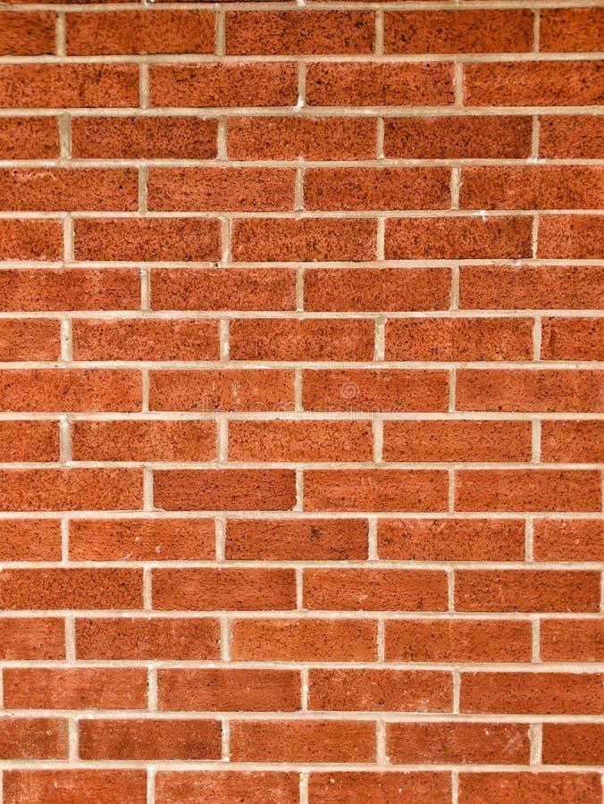 桔子,红色bricked墙壁 免版税库存图片