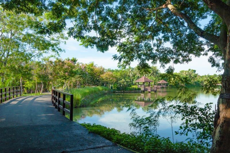 桥梁和眺望台在池塘旁边在公园 库存照片