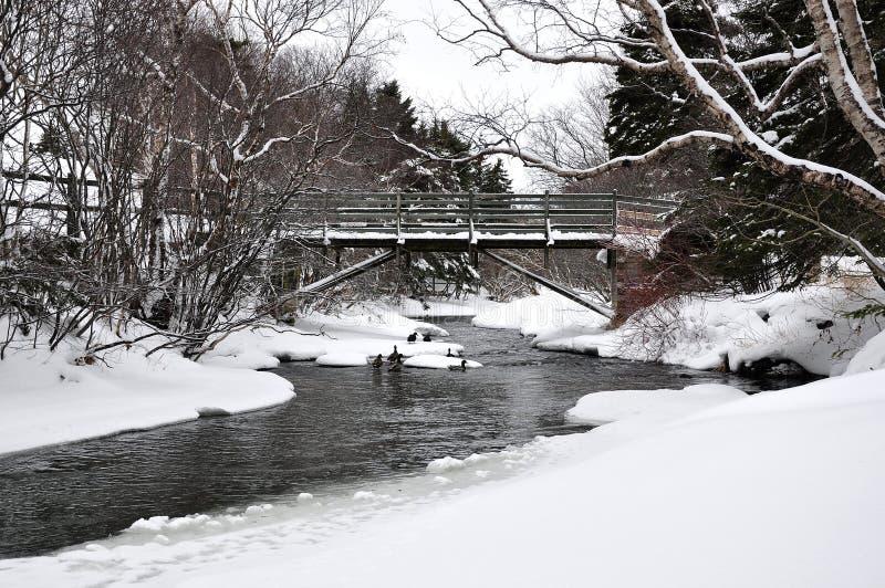 桥梁在河冬天 库存照片