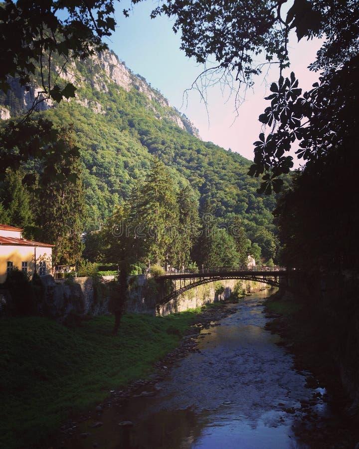 桥梁山发辫河自然 图库摄影