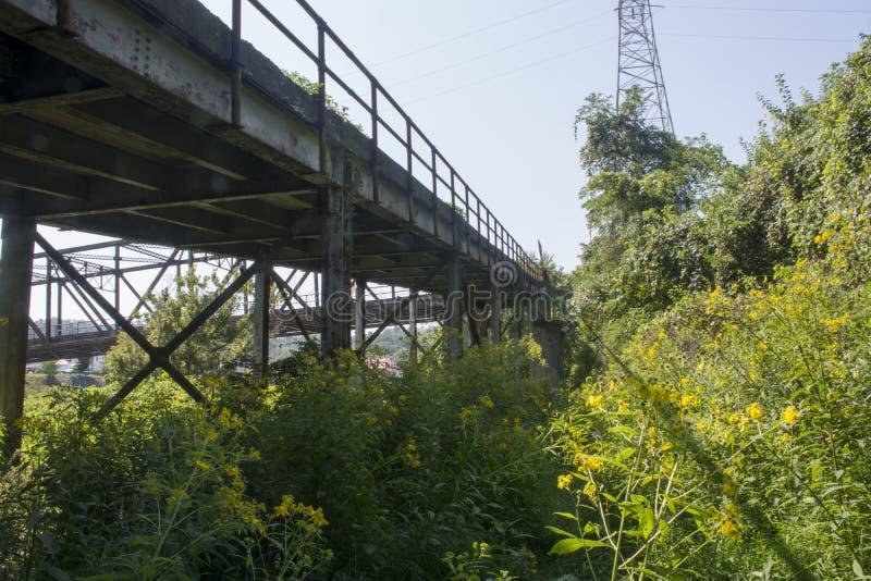 桥梁支持和射线 图库摄影