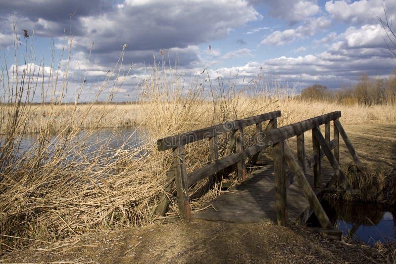 桥梁木头 库存照片