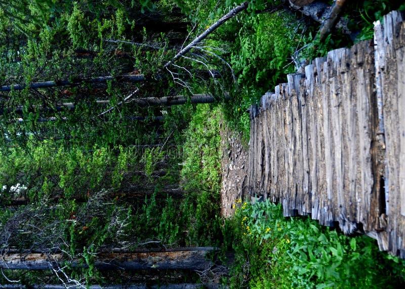 桥梁木头 免版税库存图片