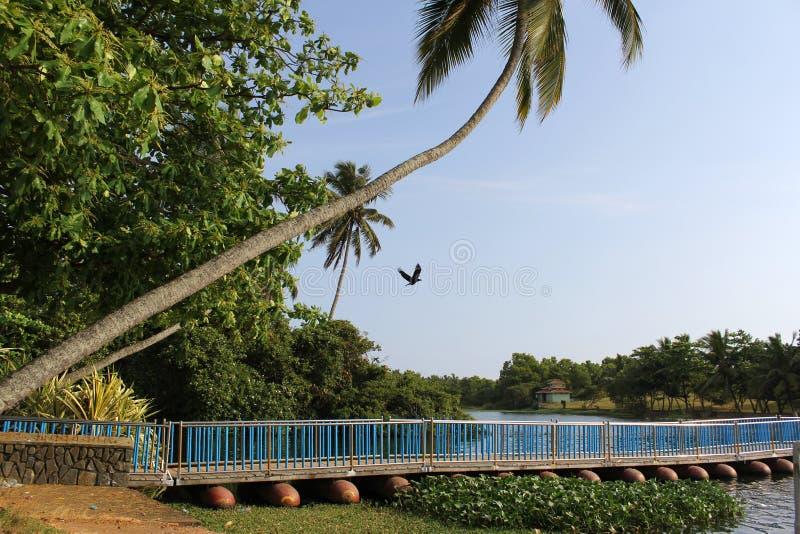 桥梁浮动 免版税库存图片