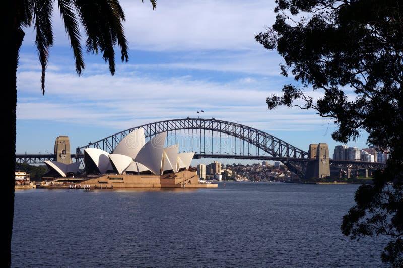 桥梁港口房子歌剧悉尼 图库摄影