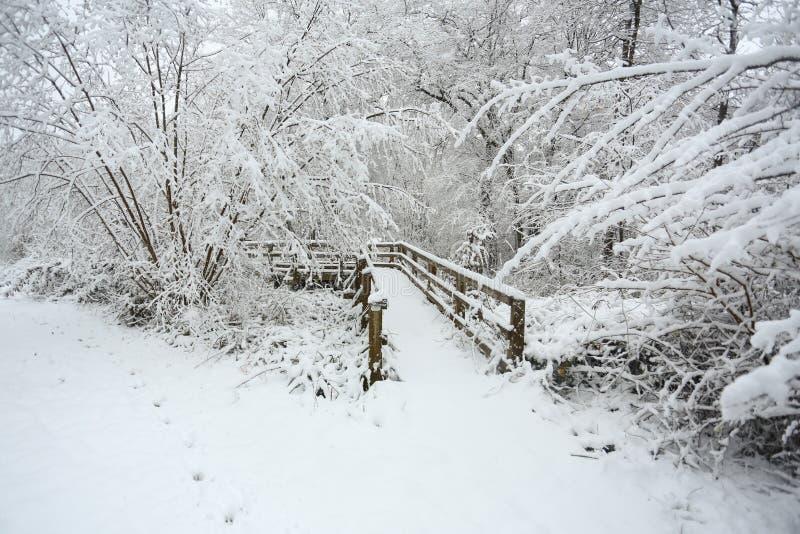 桥梁的冬天场面在球木头, Hertford荒地,英国的雪和周围的小径和树盖的 库存照片