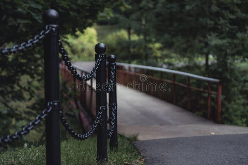 桥梁的喜怒无常的照片在一个公园,在成为不饱和的森林之间- 库存图片
