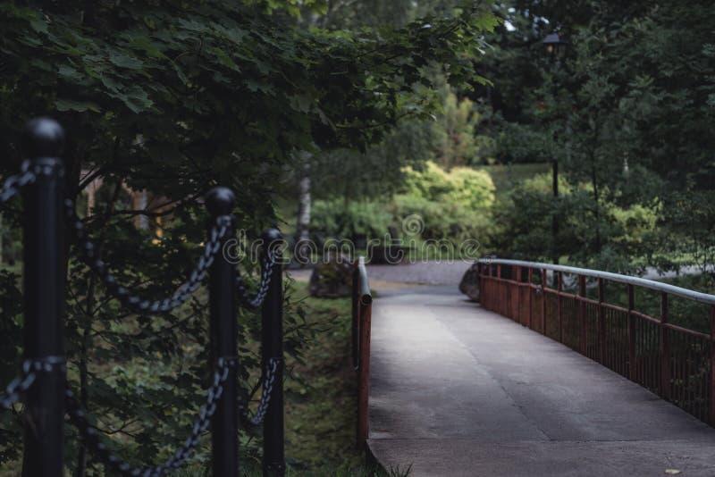桥梁的喜怒无常的照片在一个公园,在成为不饱和的森林之间- 库存照片