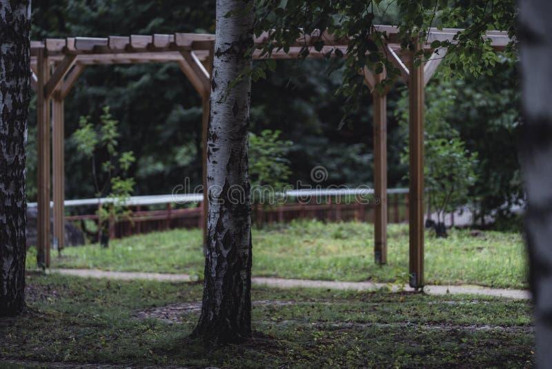 桥梁的喜怒无常的照片在一个公园,在成为不饱和的森林之间- 图库摄影
