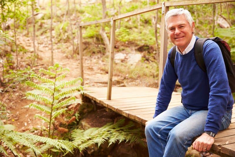 桥梁的老人在看对照相机,侧视图的森林里 免版税库存照片