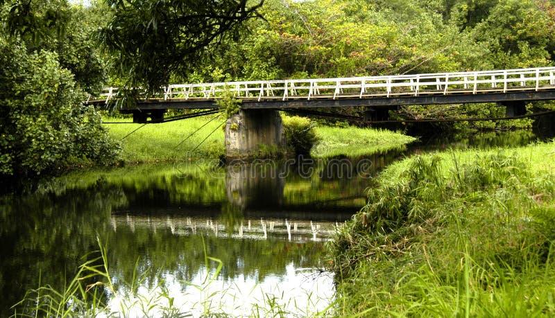 桥梁考艾岛运输路线一 库存图片