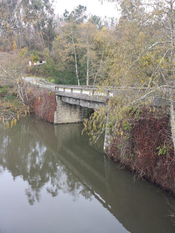 桥梁自然 库存图片