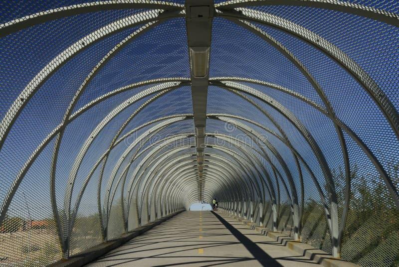 桥梁蛇图森 免版税库存图片