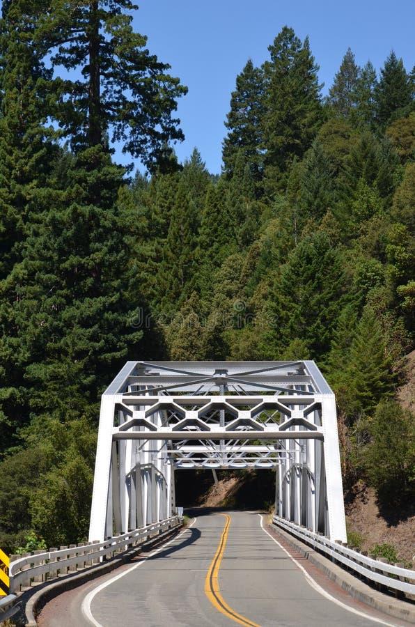 桥梁高速公路101洪堡红木 库存图片