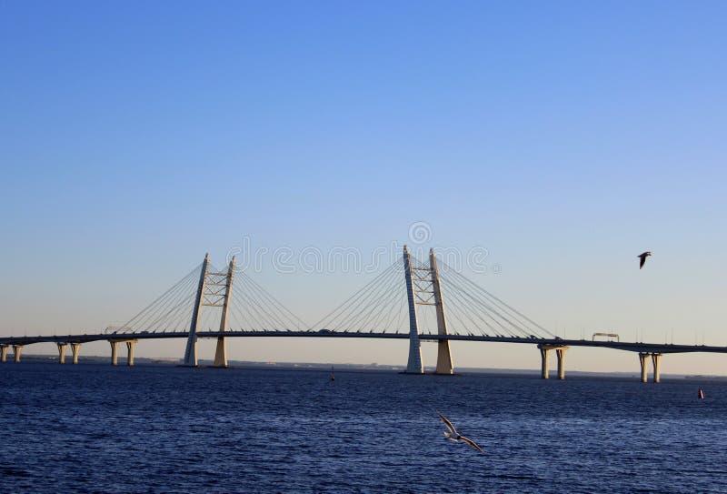 桥梁,深蓝和飞行的海鸥,好日子 免版税库存照片