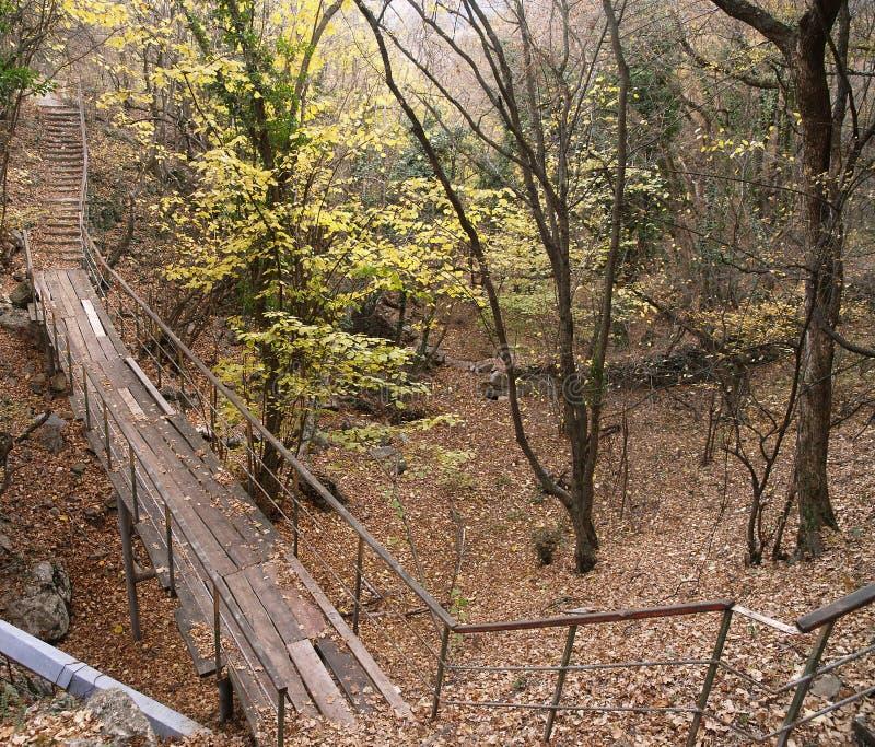 桥梁coulee河小的视图 免版税库存照片