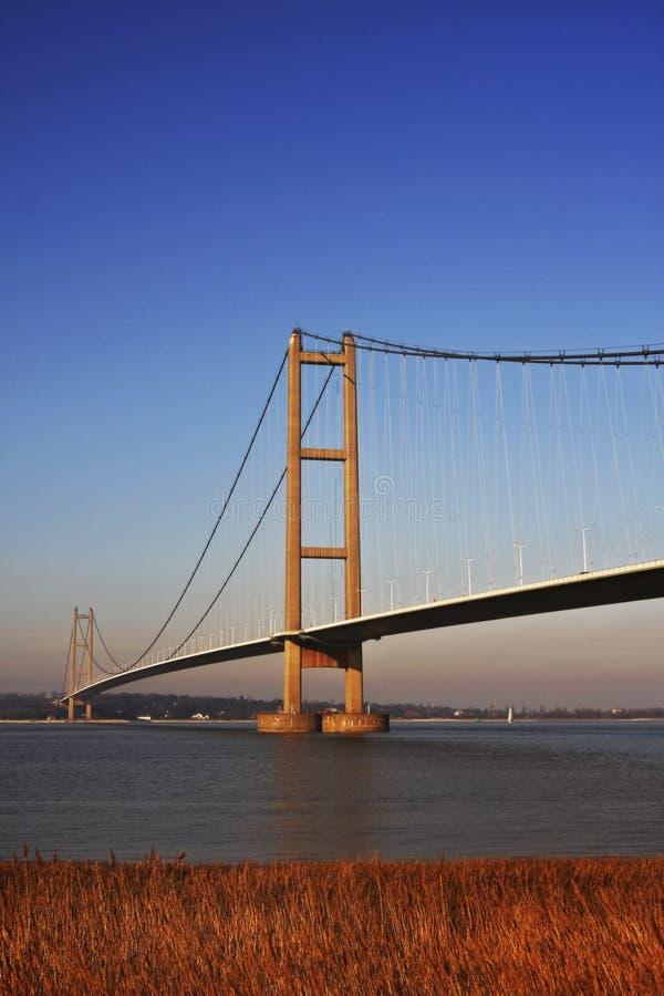 桥梁humber 免版税库存照片