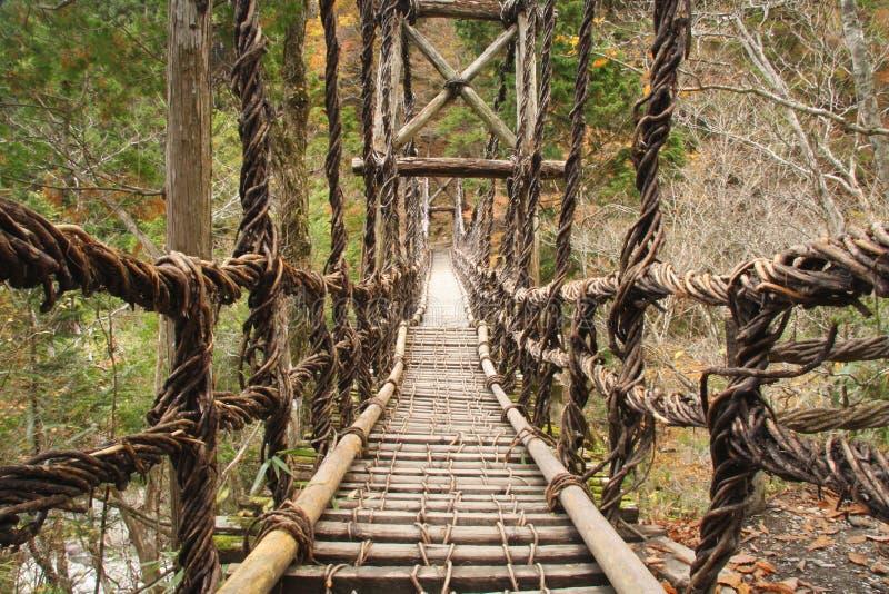 桥梁kazurabashi藤 图库摄影