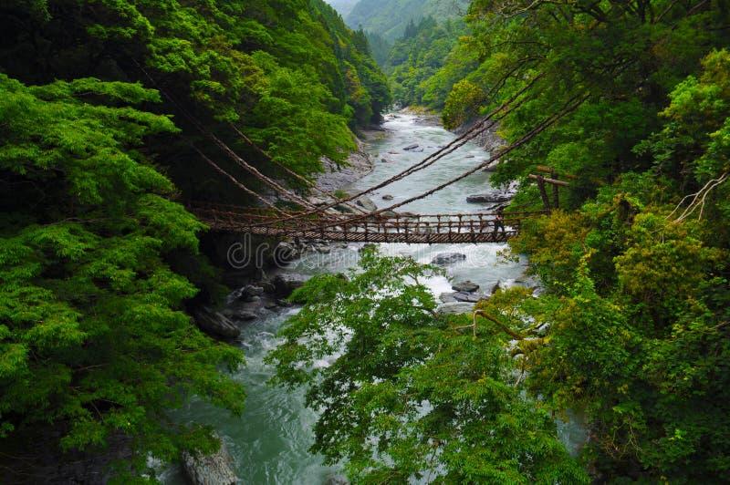 桥梁kazurabashi 库存图片