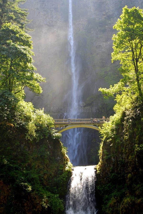 桥梁multnomah瀑布 库存图片
